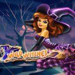 online kolikkopelit Wild Witches, Net Entertainment