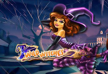online kolikkopelit Wild Witches, Net Entertainment
