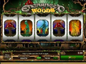 Enchanted Woods microgaming kolikkopelit screenshot