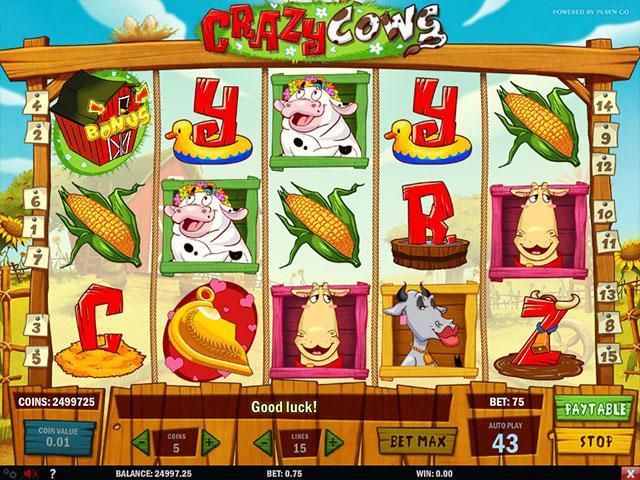 Kolikkopelit Crazy Cows PlaynGo SS - Toripelit.com