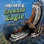 Kolikkopelit Untamed Crowned Eagle Microgaming Thumbnail - Toripelit.com