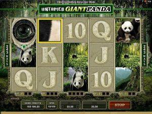 Kolikkopelit Untamed Giant Panda Microgaming SS - Toripelit.com