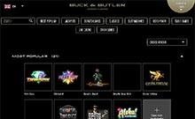 Buck and Butler casino Arvostelu kuvakaappaus  toripelit.com 4