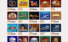 CasinoWilds casino Arvostelu kuvakaappaus  toripelit.com 4