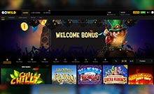 GoWild-casino-bonukset-toripelit.com