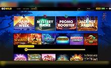 GoWild-casino-sivusto-toripelit.com
